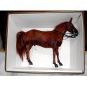 Did Realistic Horse 1/6