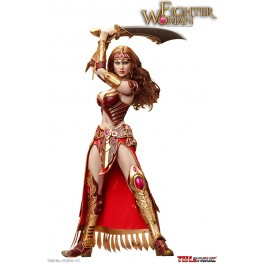 Phicen  Seamless Female Body Fighter Woman Warrior 1/6 Figure